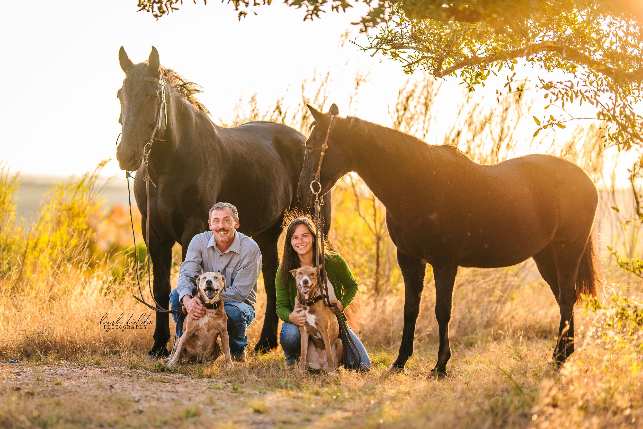 equine photographer in san antonio, tx