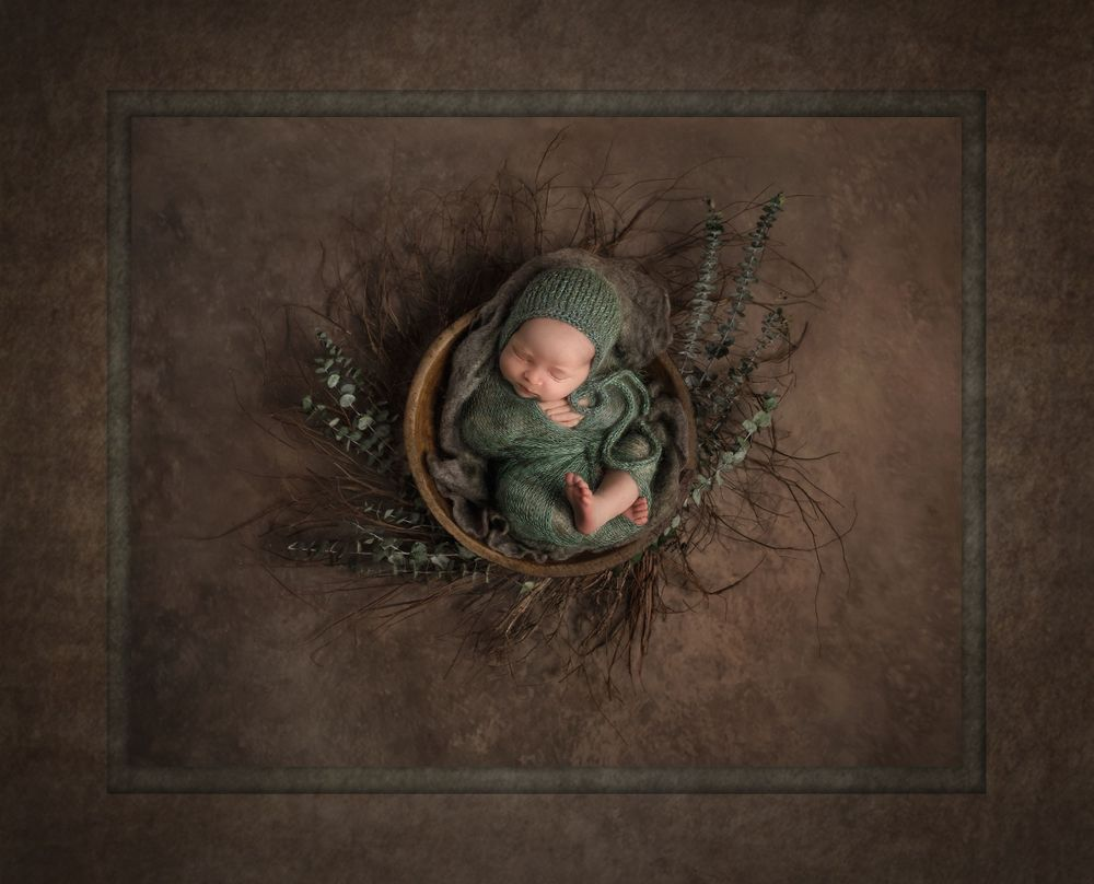austin newborn photography Nature's Gift Best Portrait of a Child 2020 Texas PPA euclyptis