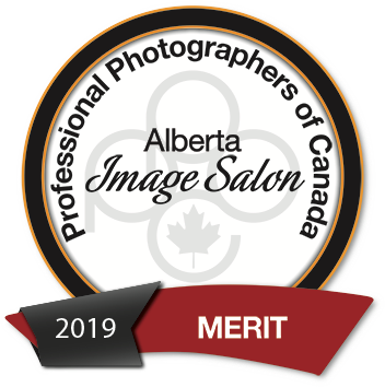 Alberta Award with Merit score from PPOC Image Salon in 2019
