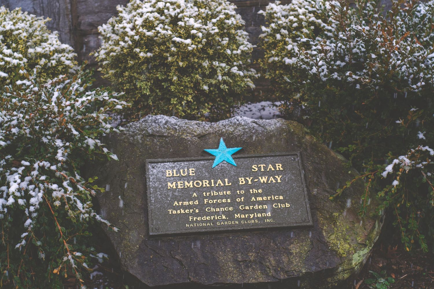 A placard on a stone for the Blue Star Memorial By-Way.