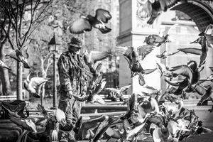 Larry the Bird Man surrounded by his pigeons in washington Square Park