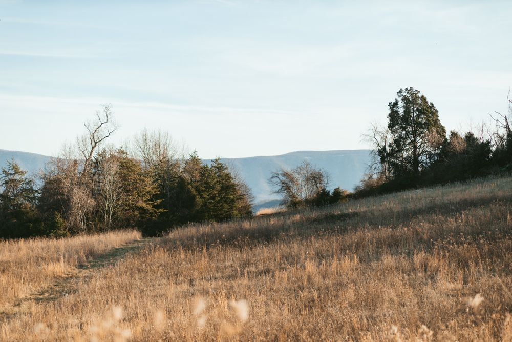 blue ridge mountains, natural bridge Virginia photography landscape photo Emily Butz Richmond