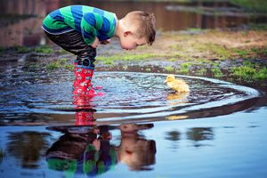 plymouth, ma child photographer | heidi harting | young boy examining a baby duck in a reflective puddle