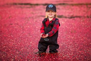 plymouth, ma child photographer | heidi harting | young girl wearing waders in a red cranberry bog