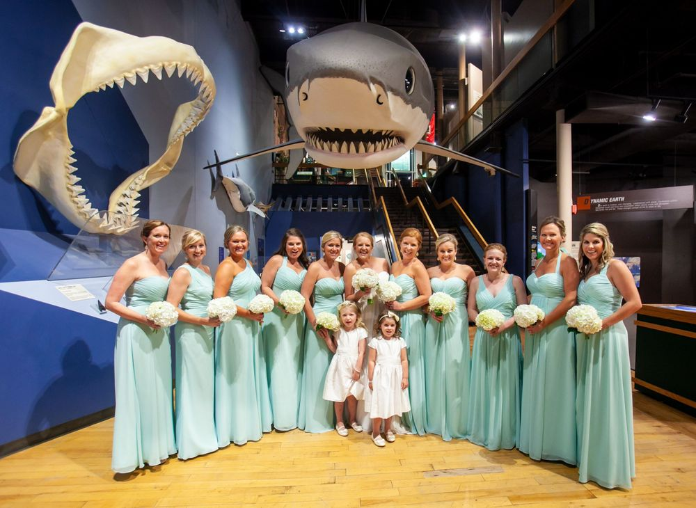 Maggie and her bridesmaids pose under the shark before their wedding at the SC State Museum in Columbia, SC.