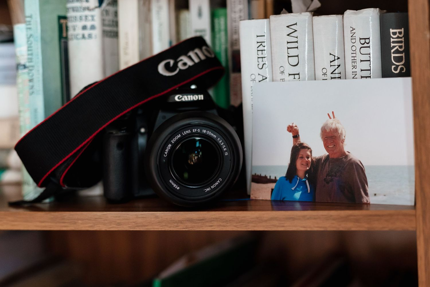 Canon camera on wooden book shelf