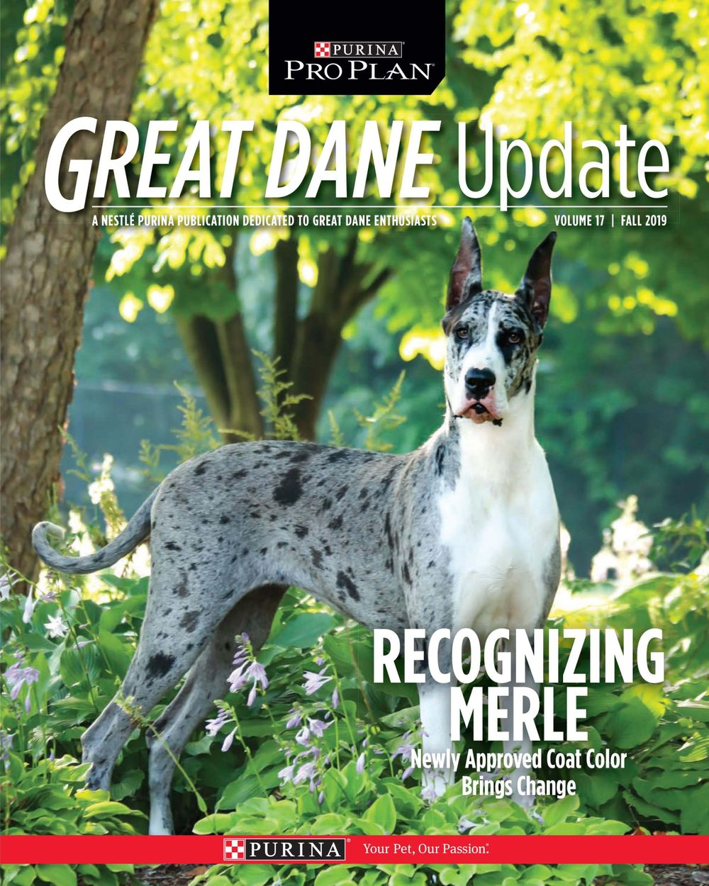 Purina Dog Magazine Cover with Great Dane