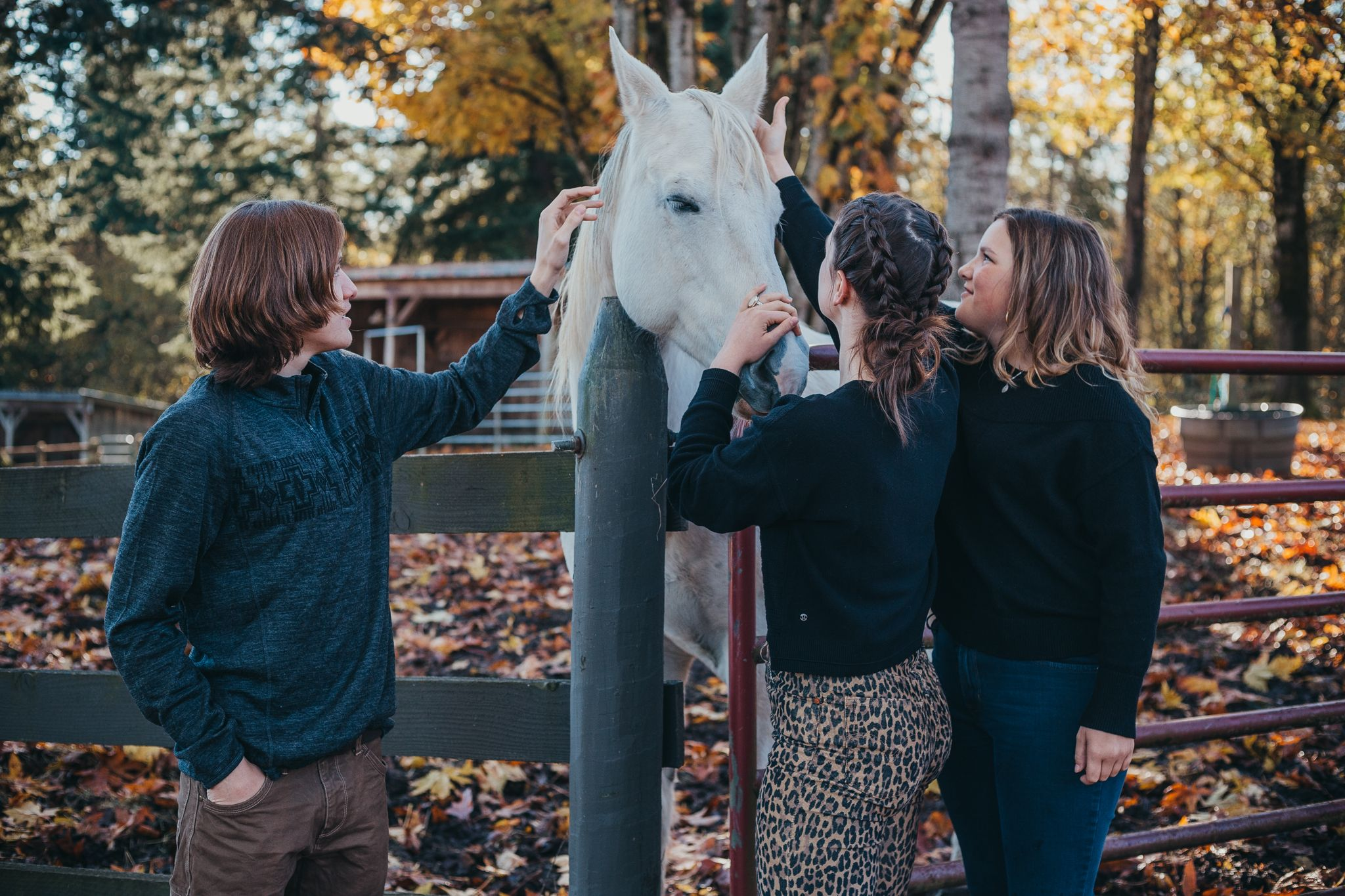 two girls and a boy petting a white horse