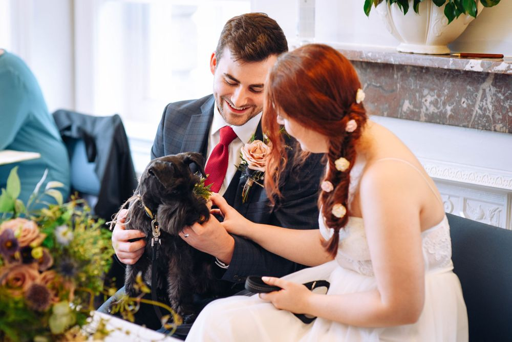 Frome Town Hall wedding by Zara Davis Photography, Gloucestershire petting their dog
