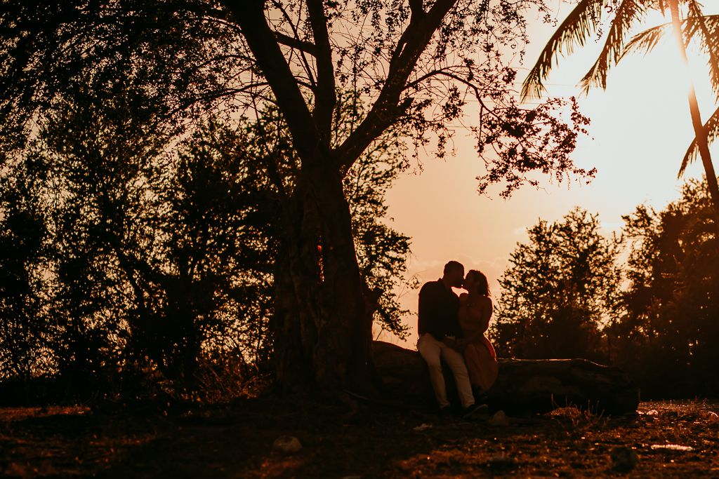silhouette of a couple kissing under a tree