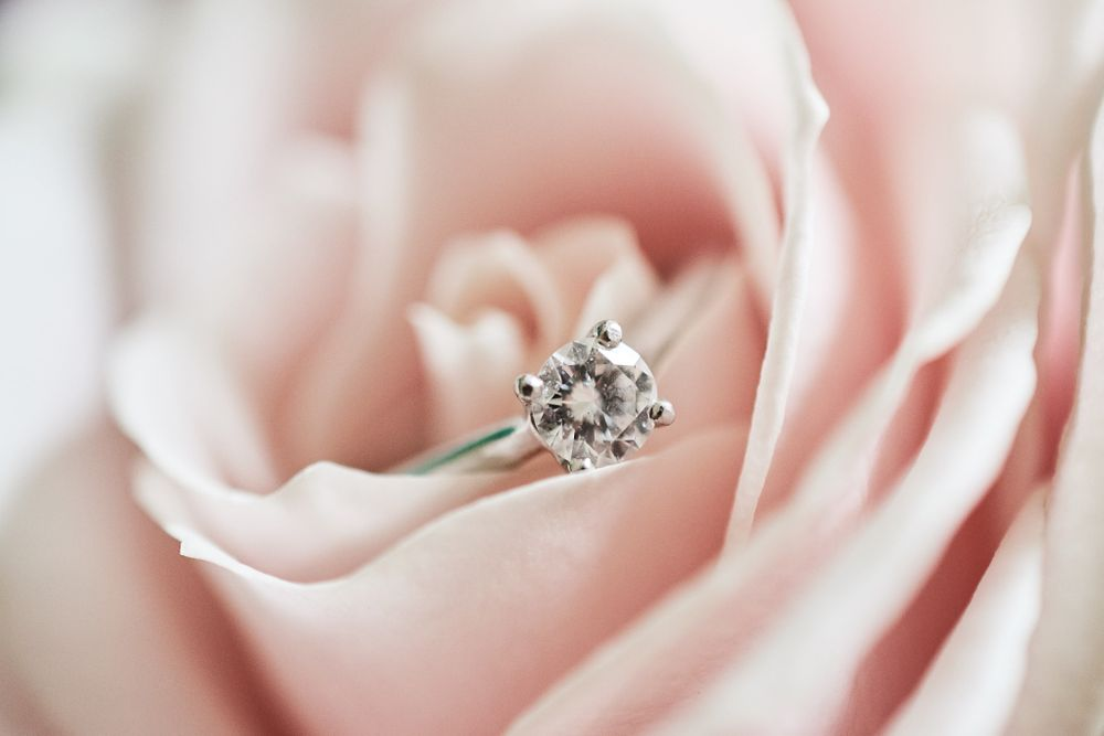 brides engagement ring sits inside pink rose at The Boathouse, Ormesby. by Norfolk Wedding Photographer Faye Amare