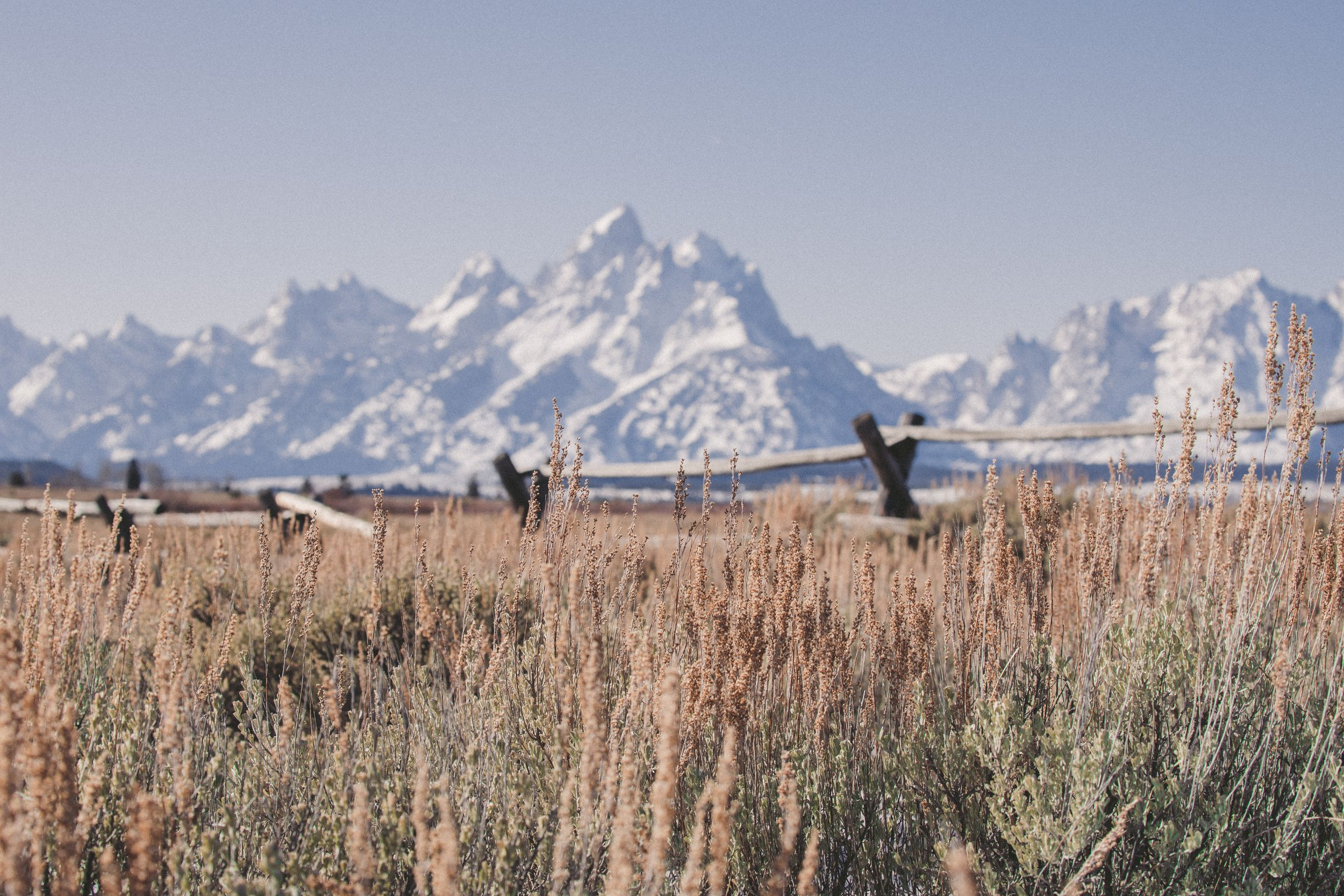 Jackson Hole intimate wedding elopement photographer