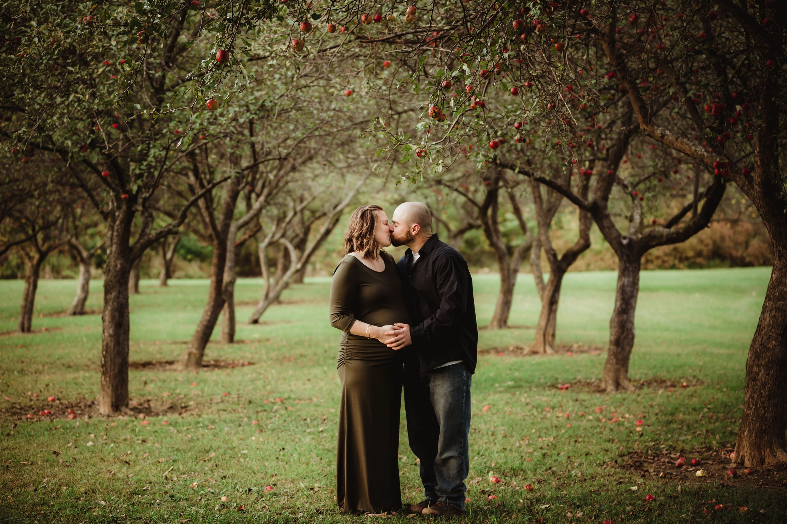 Pregnant woman and her husband kissing each other standing between rows of apple trees.