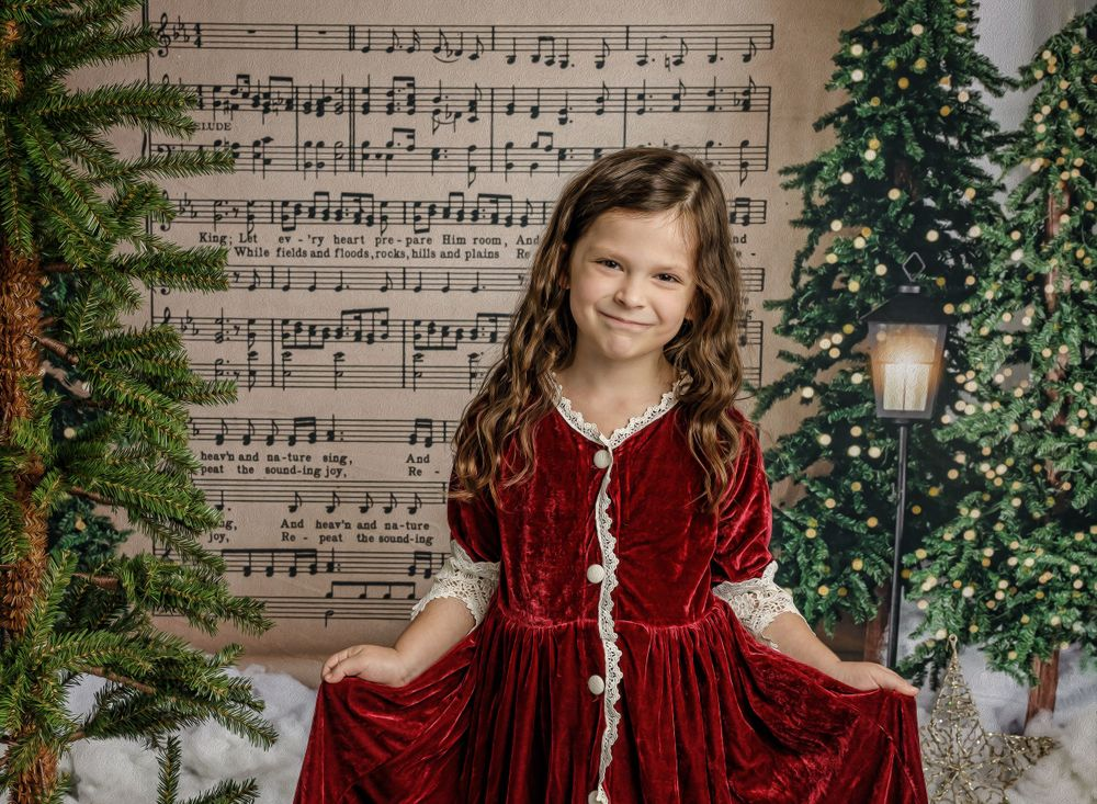 austin newborn photograpy 2020 Magic of the Holidays Limited edition Santa's Magical Workshop Christmas 2020