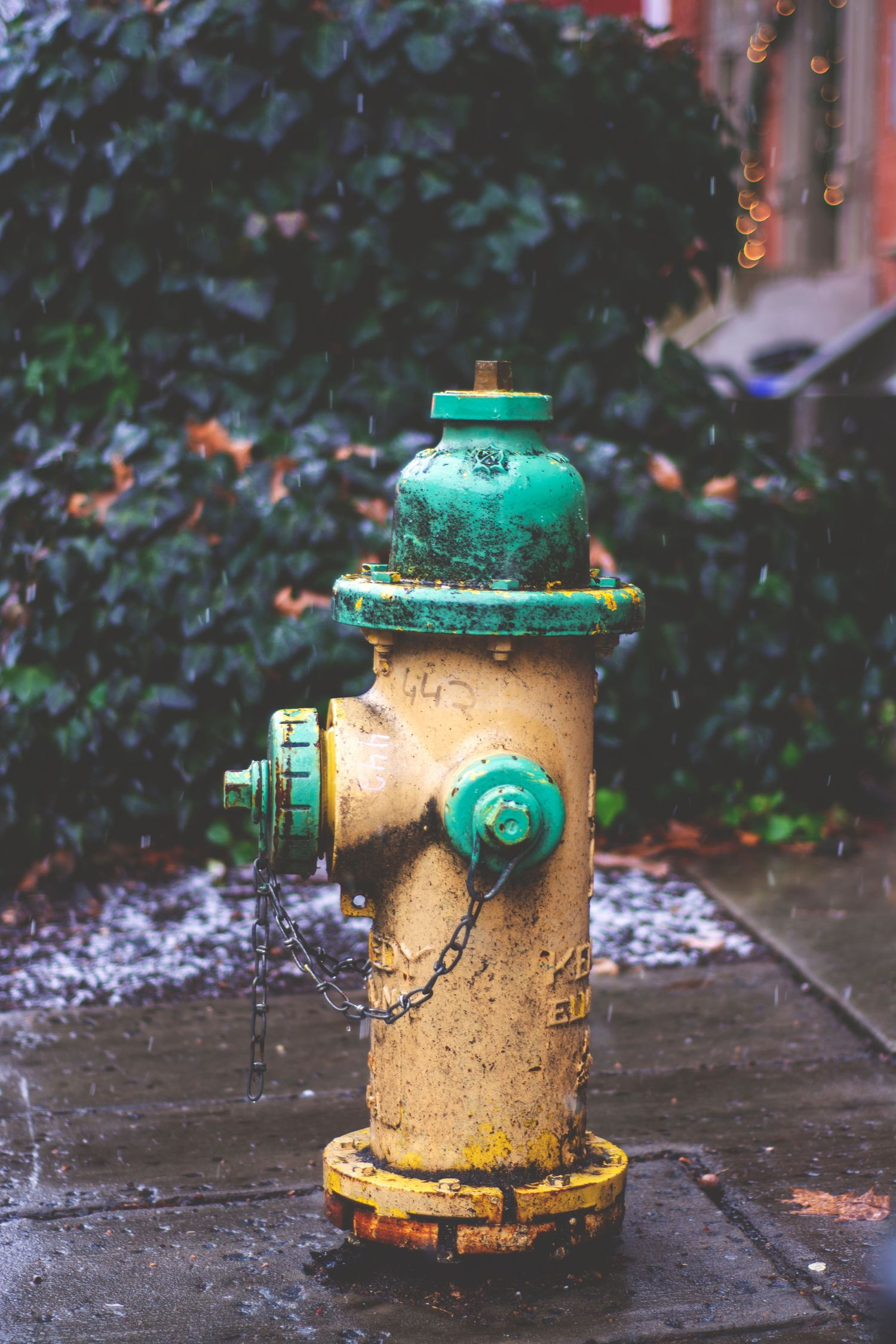 A green and yellow fire hydrant.