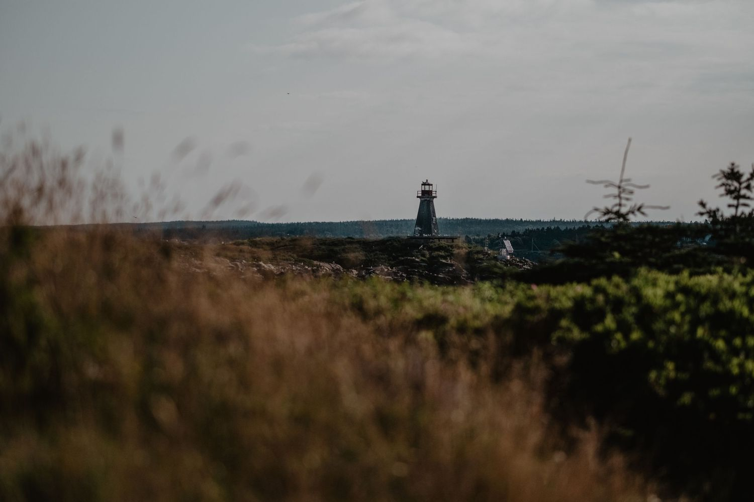 brier island peters island lighthouse