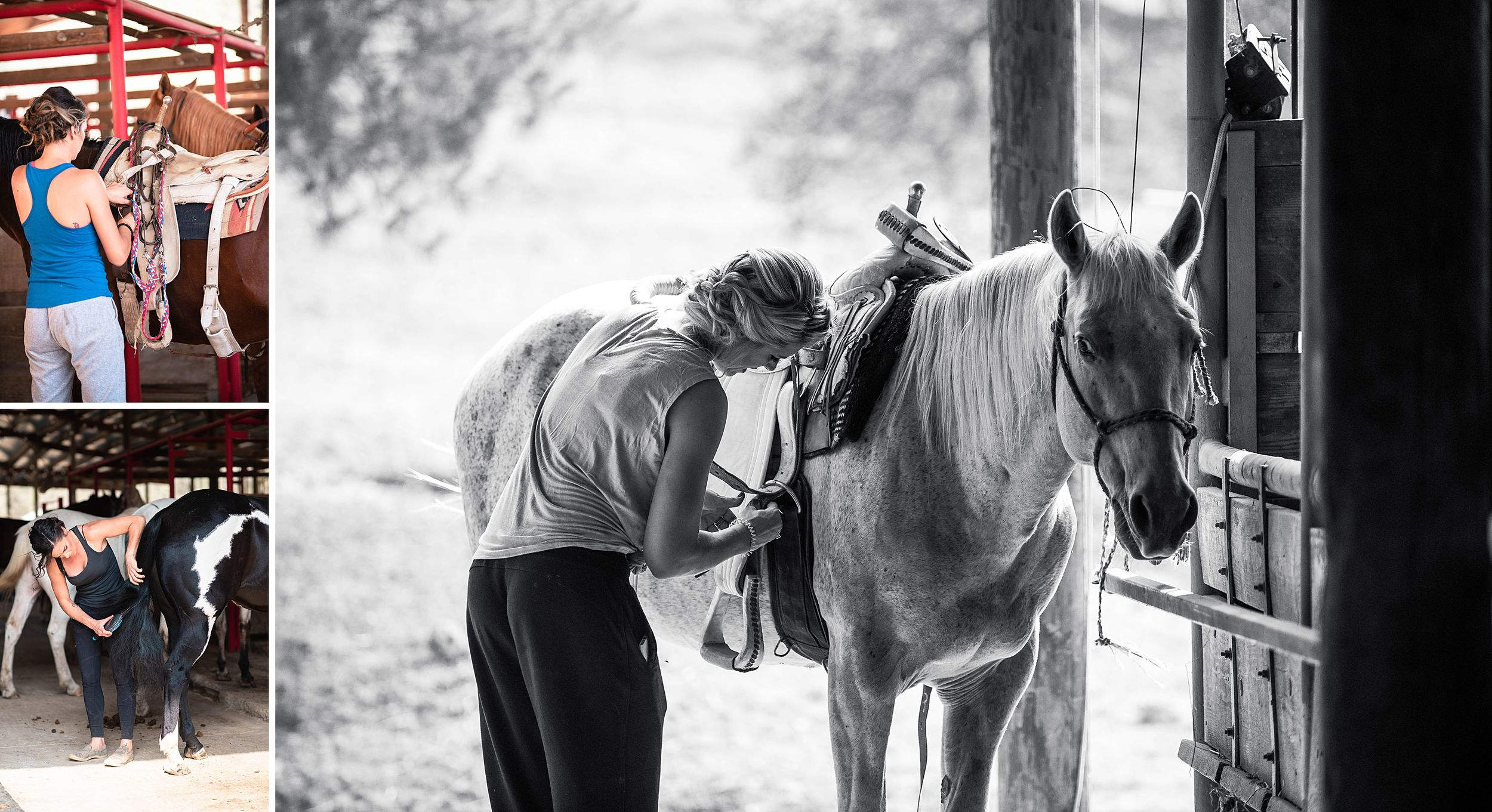 outdoor wedding in three rivers california riata ranch horses