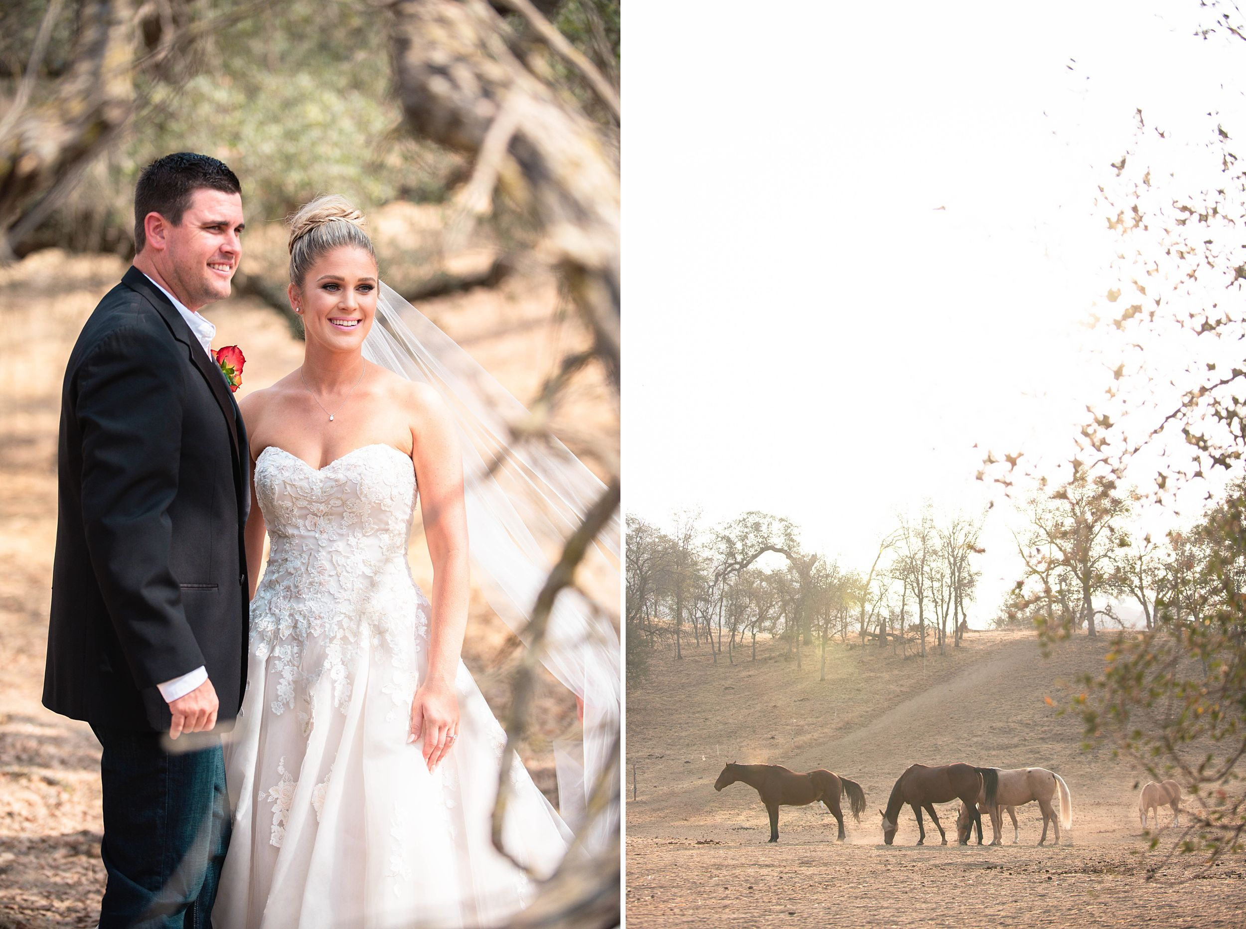 outdoor wedding in three rivers california riata ranch bride and groom horses
