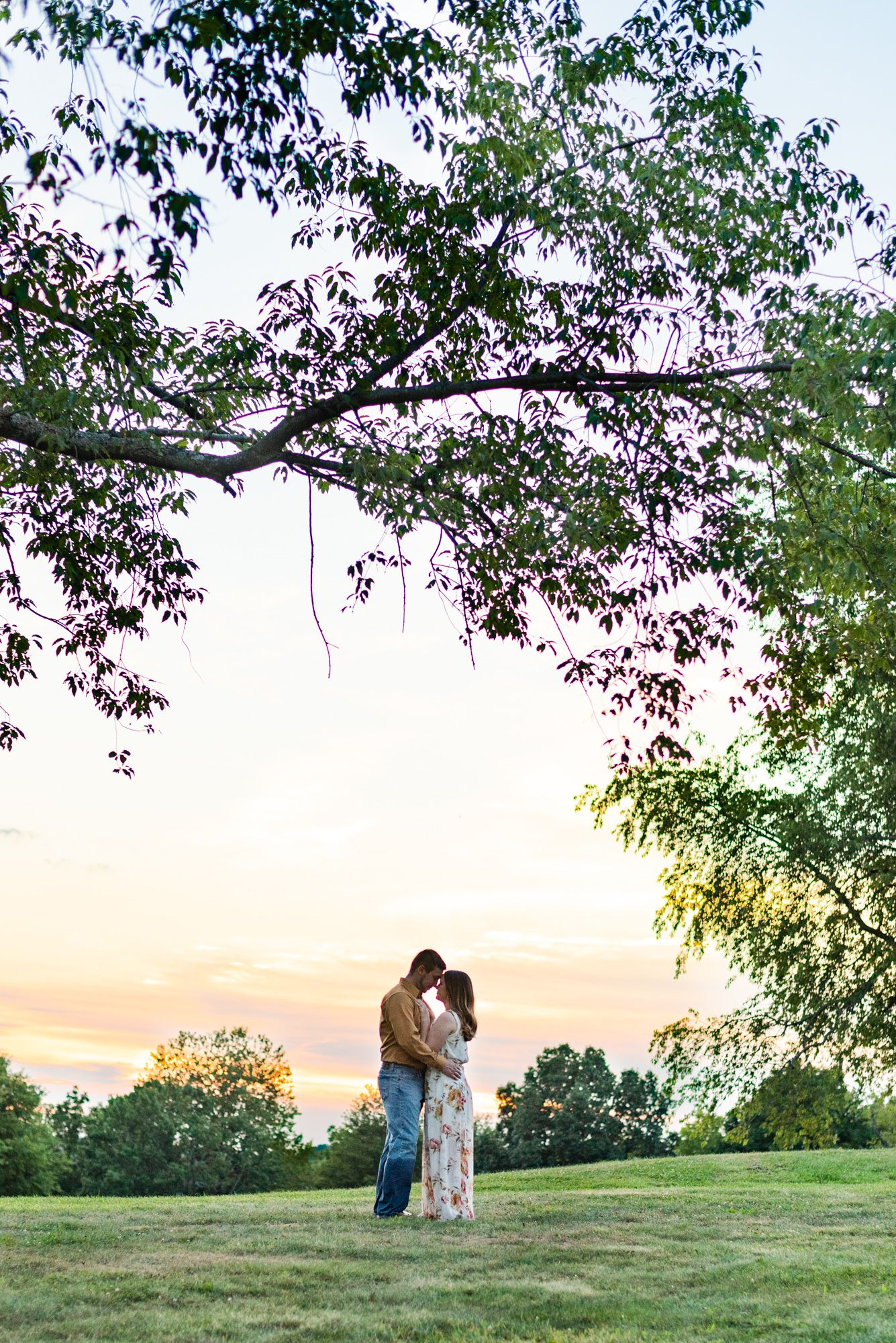 Couple standing under tree in sunset golden hour at Moraine State Park in Pennsylvania