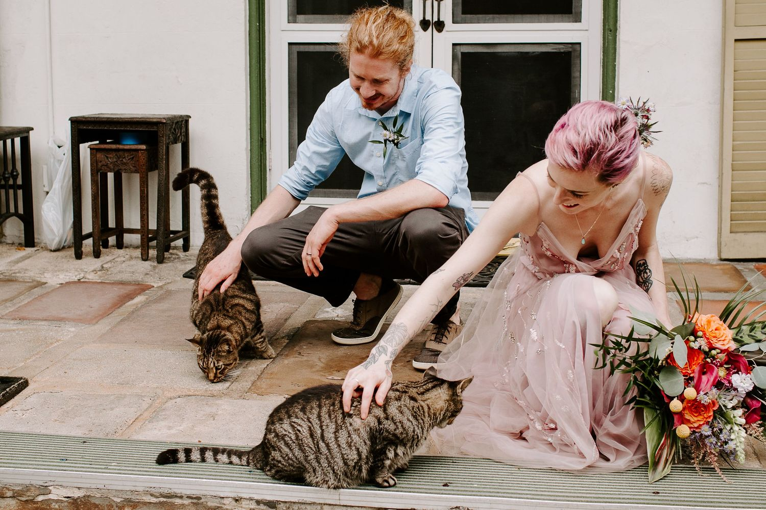 Couple petting cats at the Hemingway House during their full day key west elopement