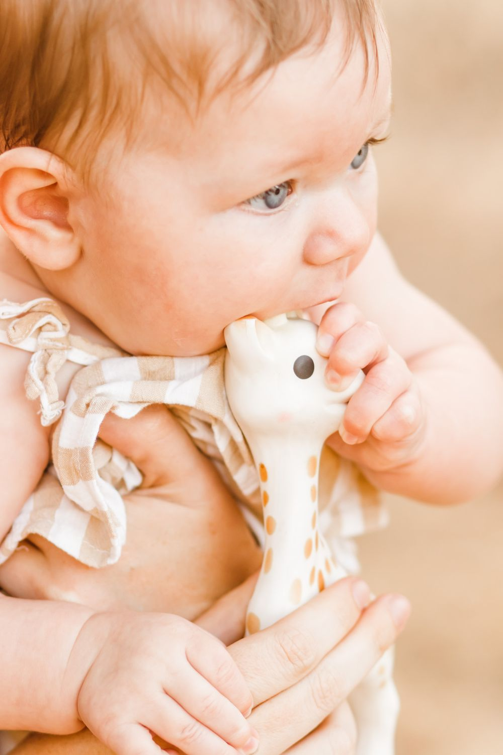 Close up of a little baby girls with big blue eyes biting a toy giraffe