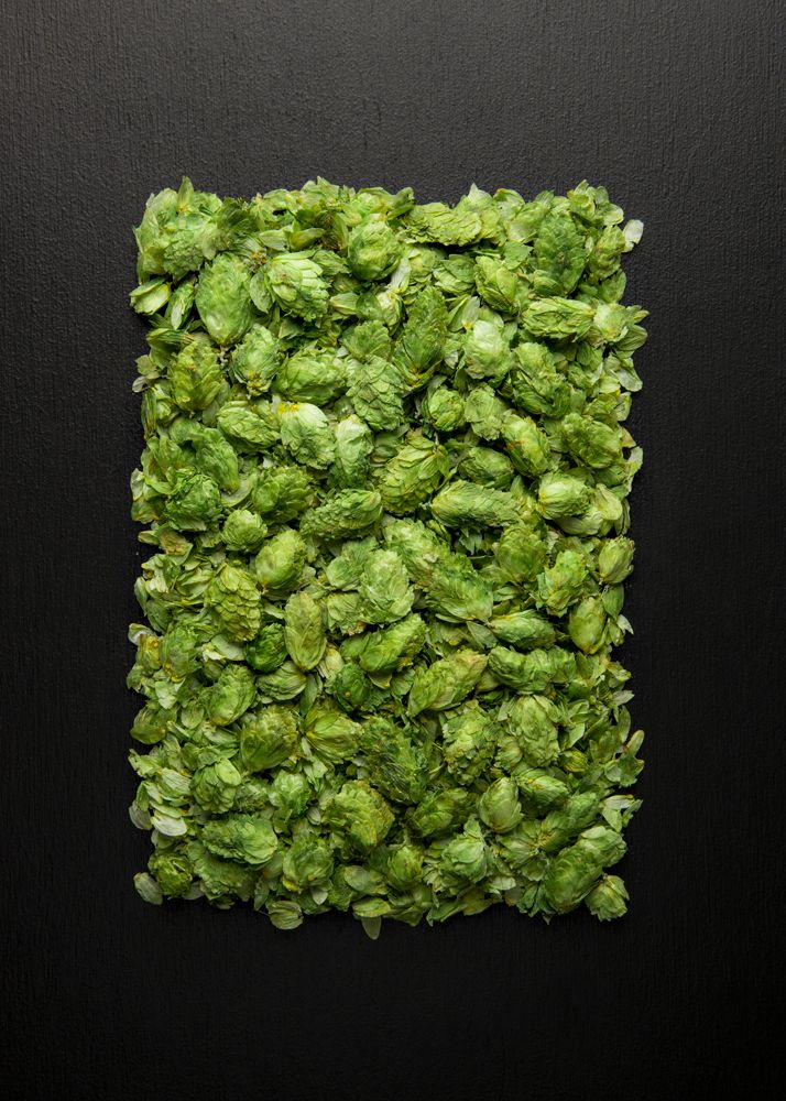 Hops, Food & Beverage