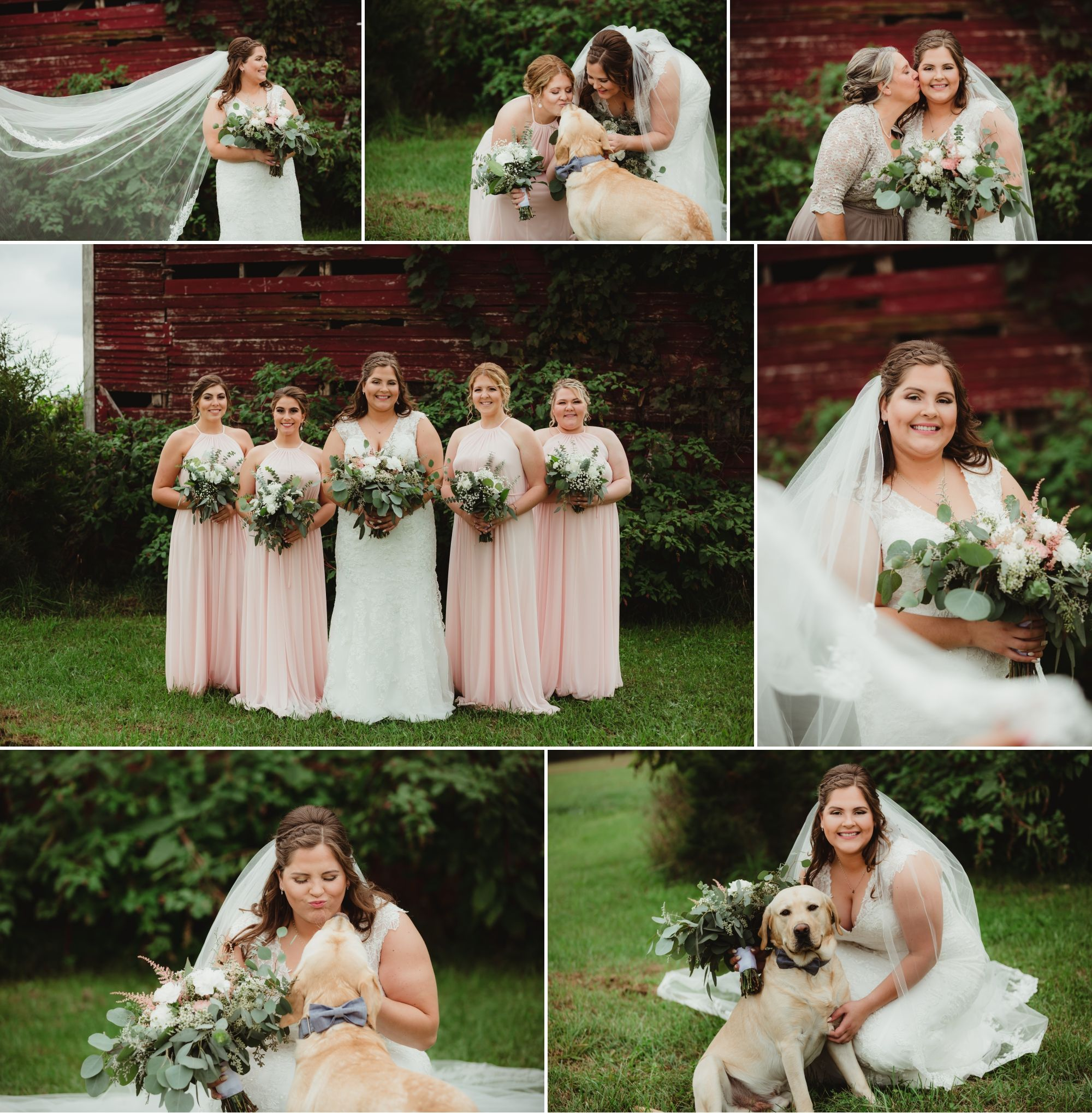 Collage of the bride and bridesmaids in front of an old barn. Bridesmaids wear light pink gowns, bride's dress is lace.