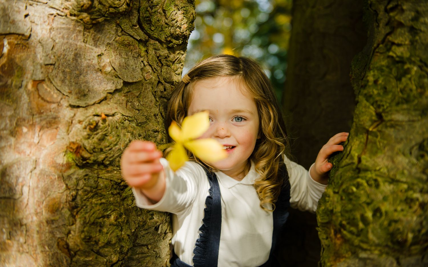 photograph of girl holding leaf hidden in tree