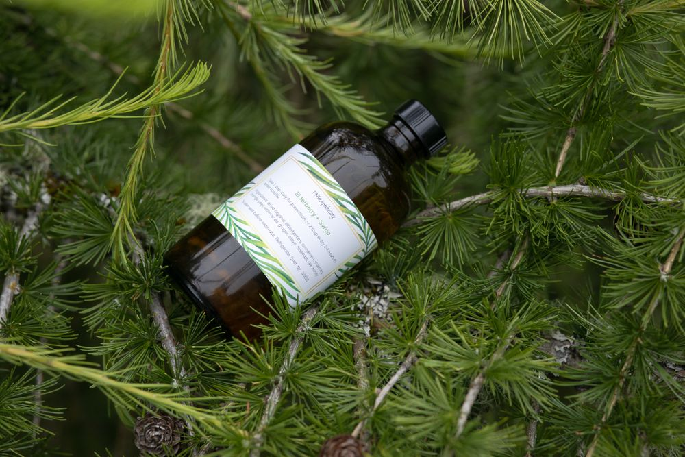PNW Apothecary homemade elderberry syrup product in tree for small business product