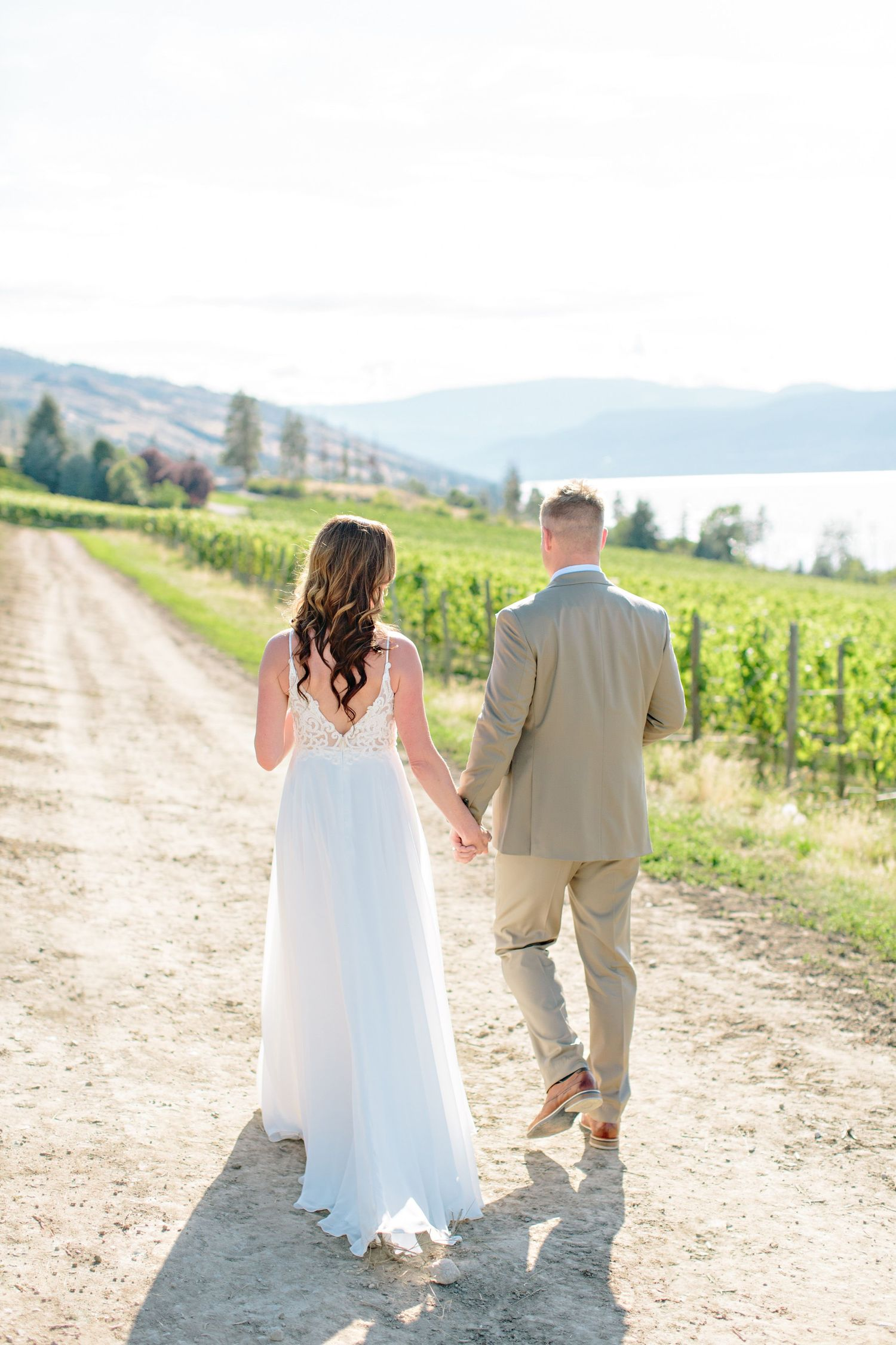 bride and groom walking in cedarcreek winery vineyard