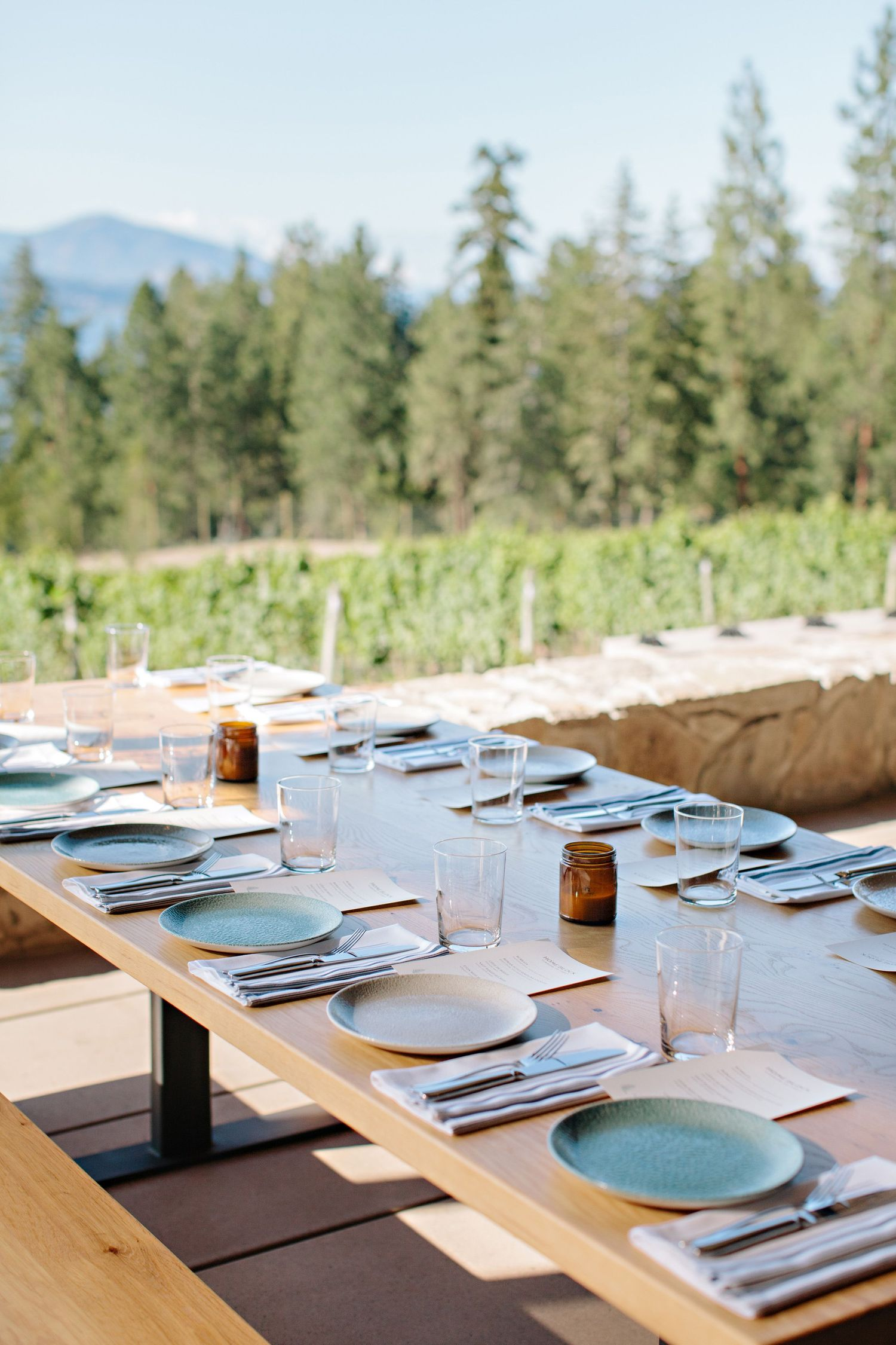 Home Block table setting with a vineyard view