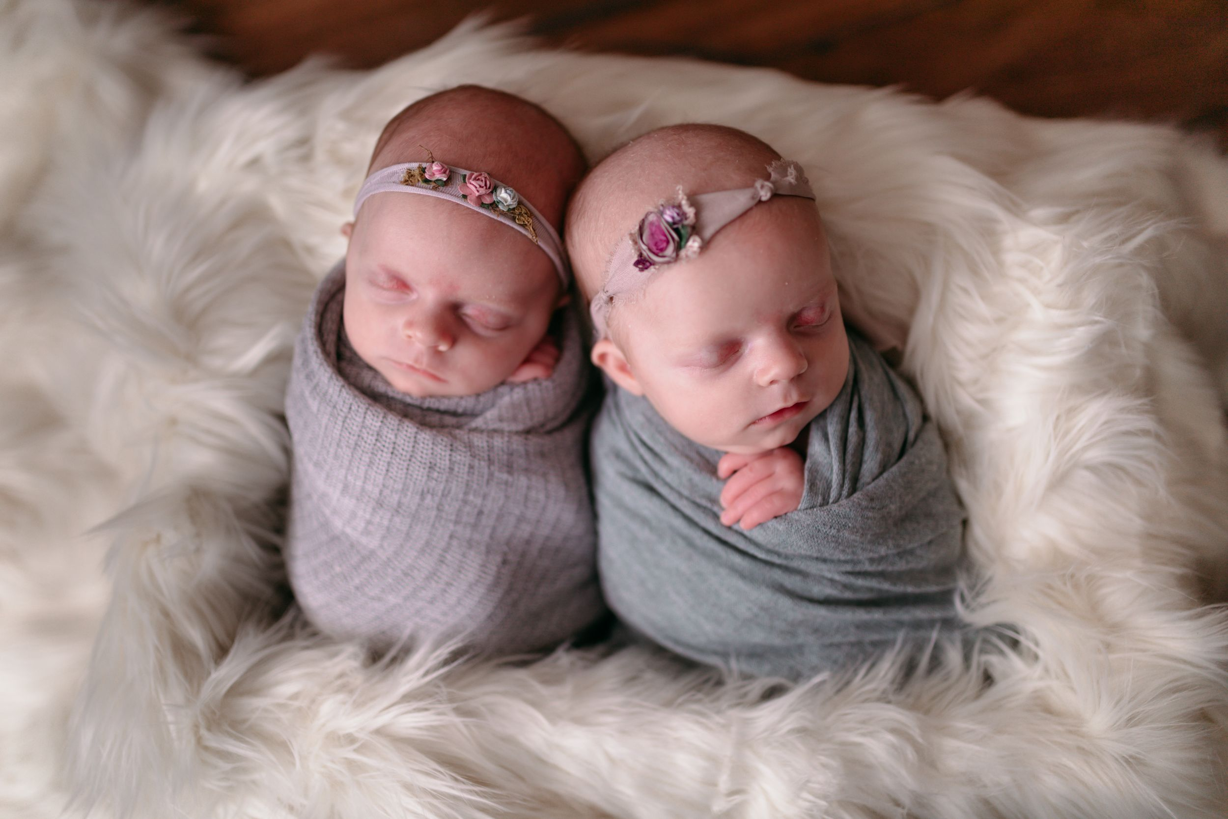 Twin Newborns Wrapped together| Newborn Photography