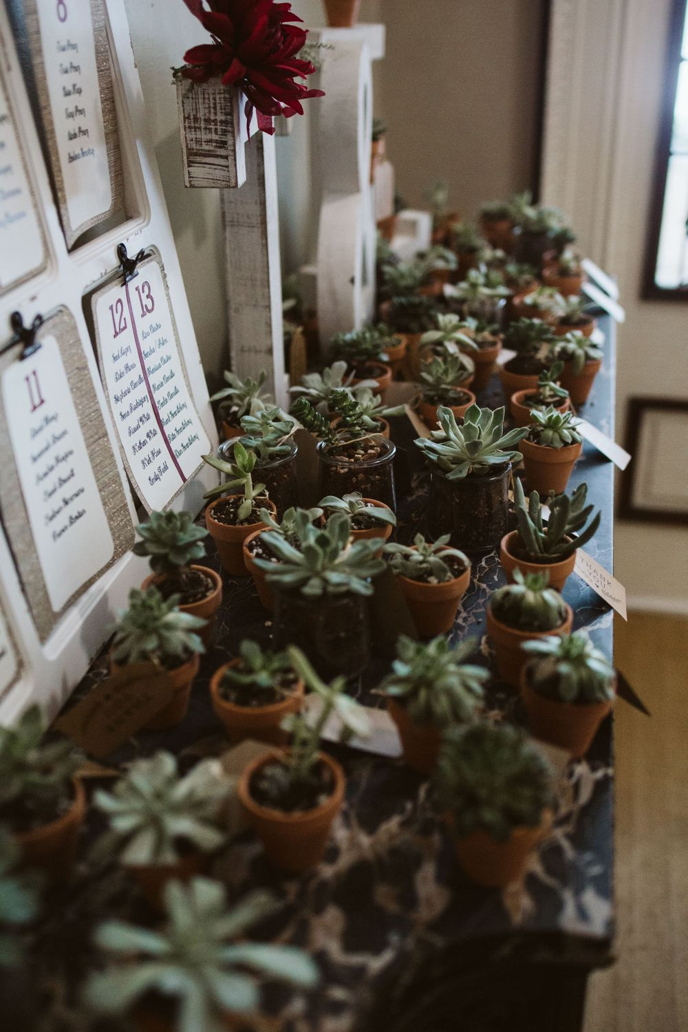 plant party favors, inspiration, winter wedding, Colorado reception ideas, classy wedding decor, best photographer in CO