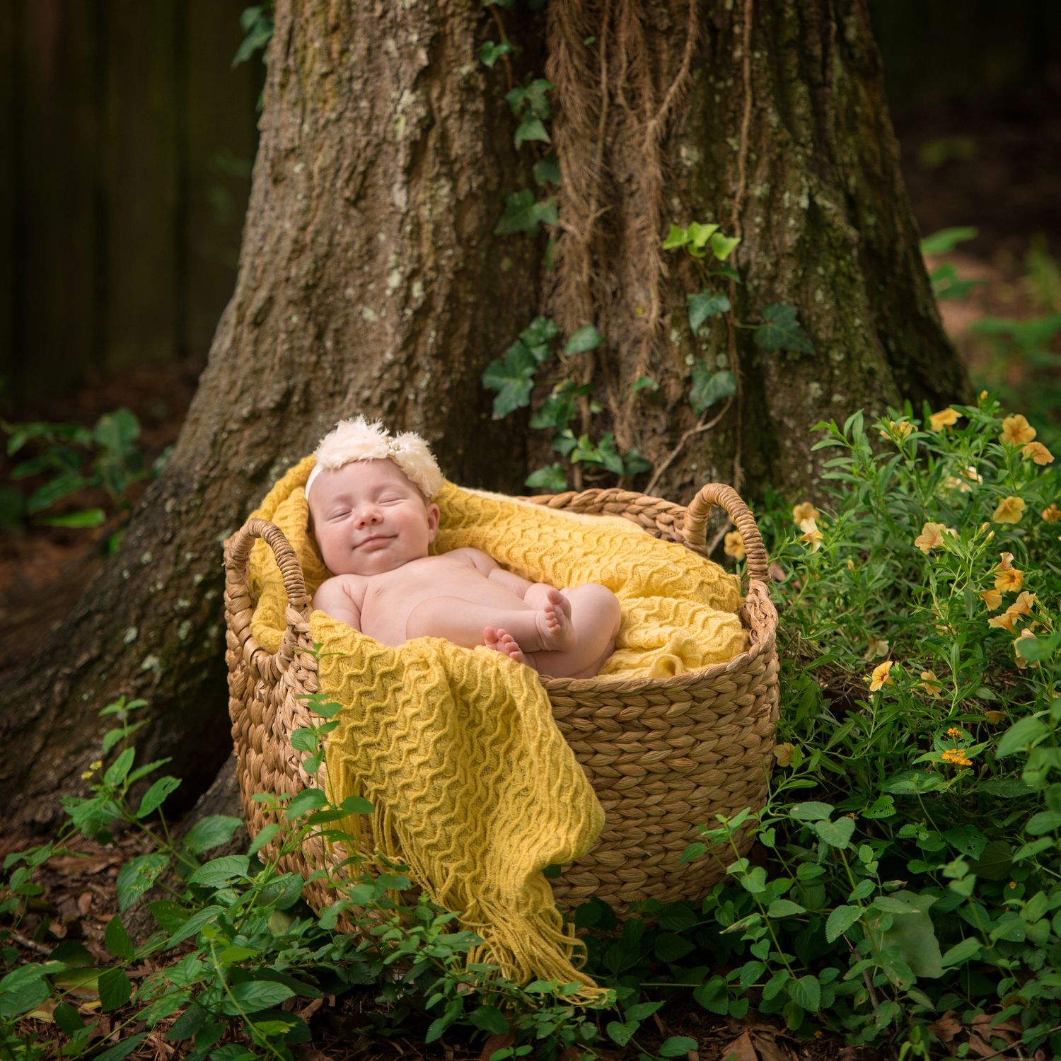 Newborn portrait of baby girl in a basket with yellow blanket, oak trees  and flowers