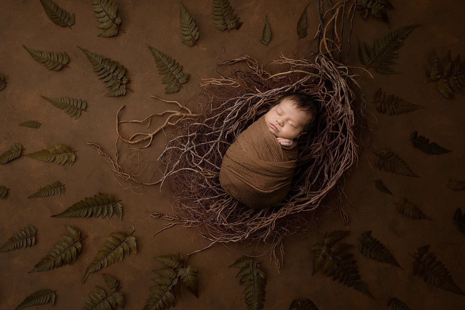 Griffin's Newborn Session with Austin Newborn Photography brown background with ferns