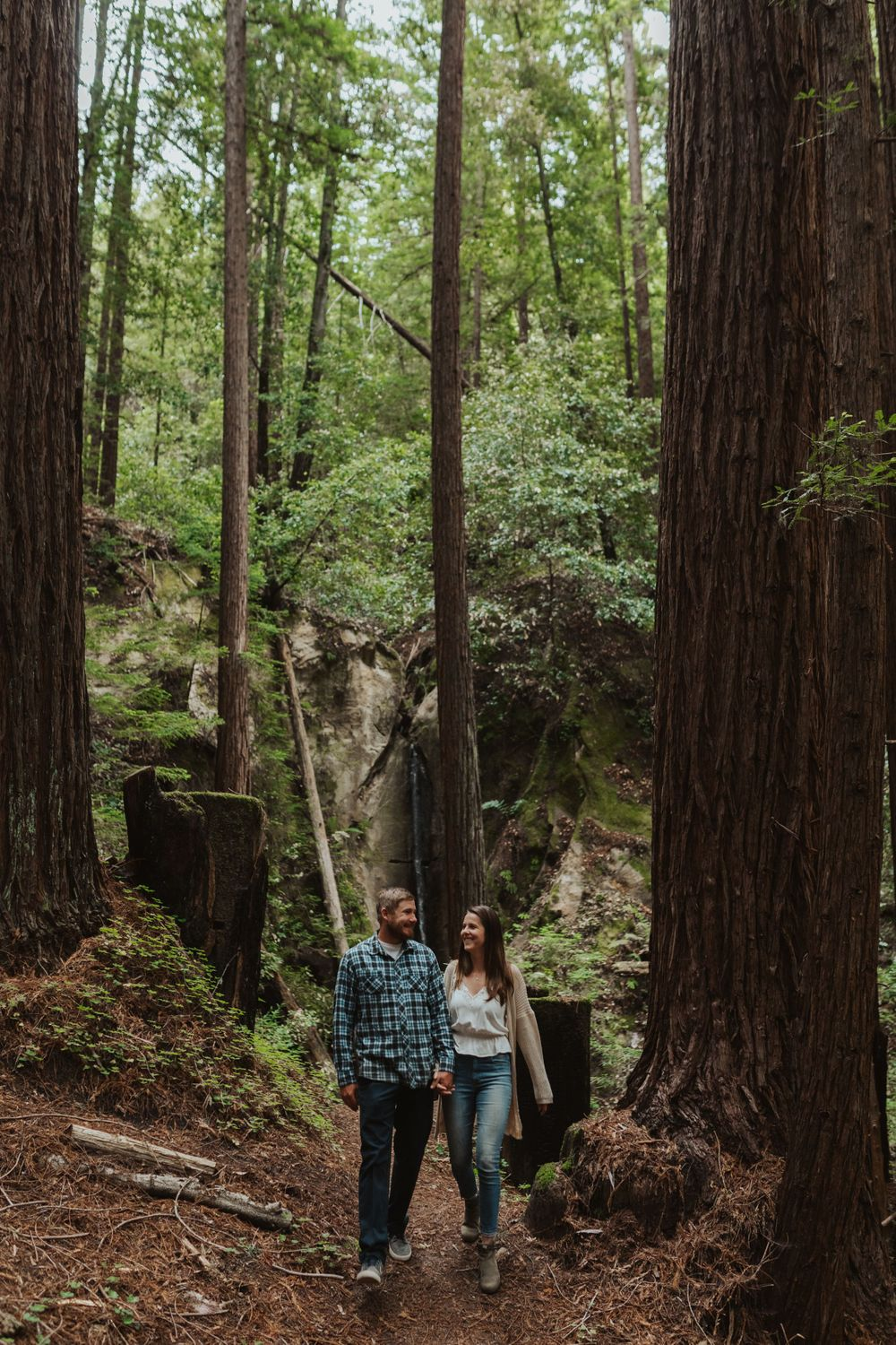 redwood forest engagement photos bay area california wedding photographer