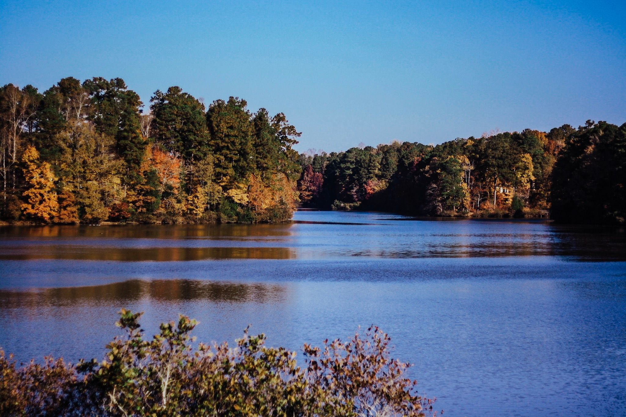 lake Lynn during the fall season in Raleigh north carolina