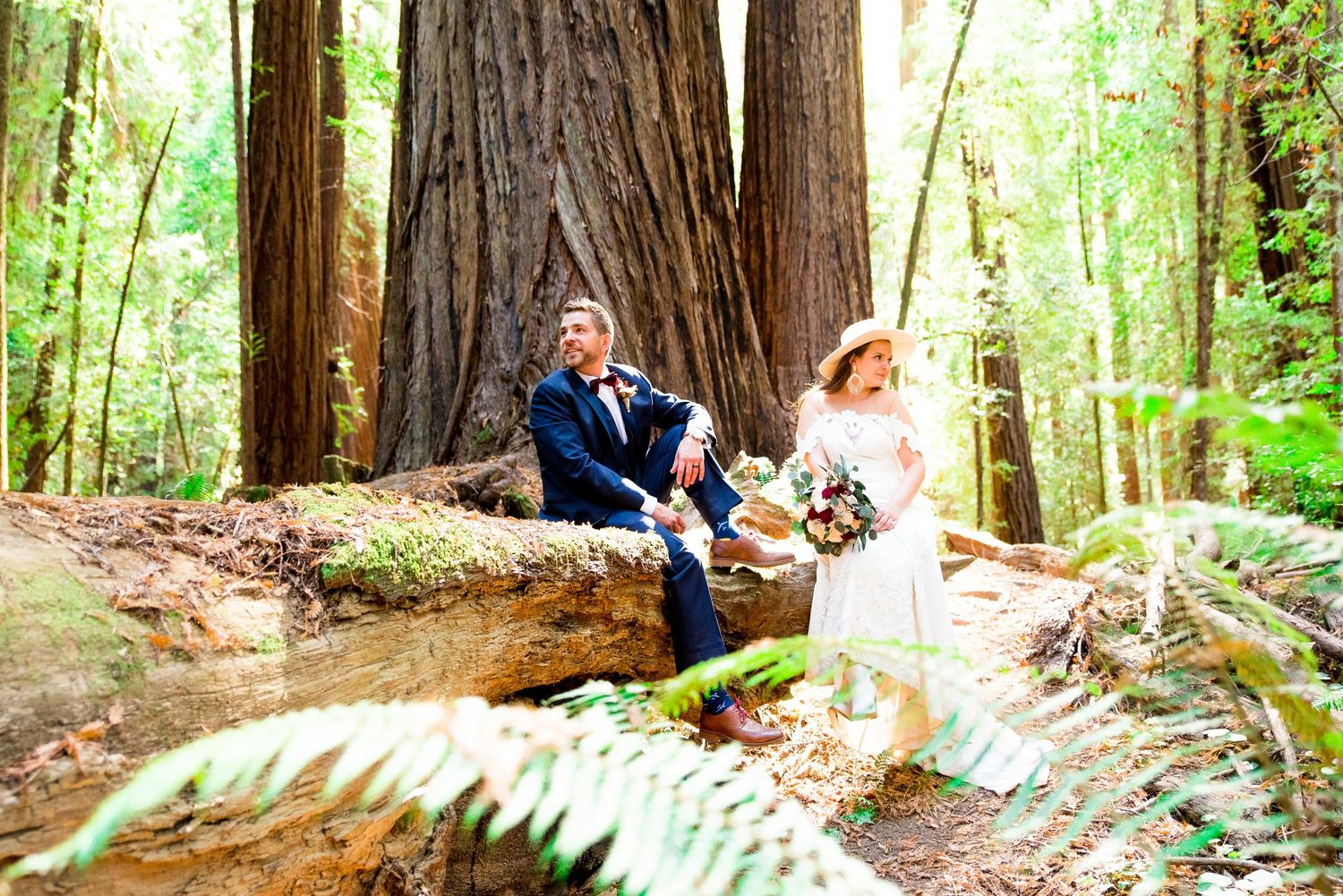 California couple sits on a fallen Redwood Tree in the morning and looks to different sides