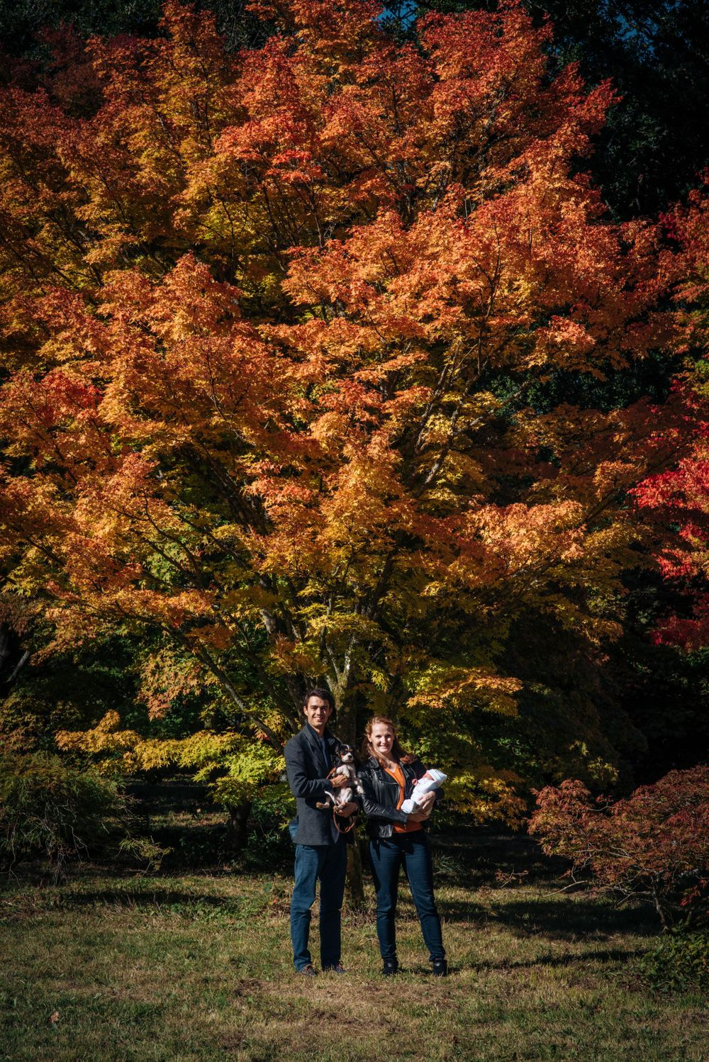 Zara Davis Photography Stroud Gloucestershire Cotswolds family westonbirt arboretum year long family