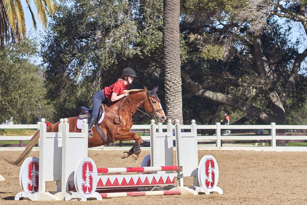 Hunt Seat Jumping at Stanford University