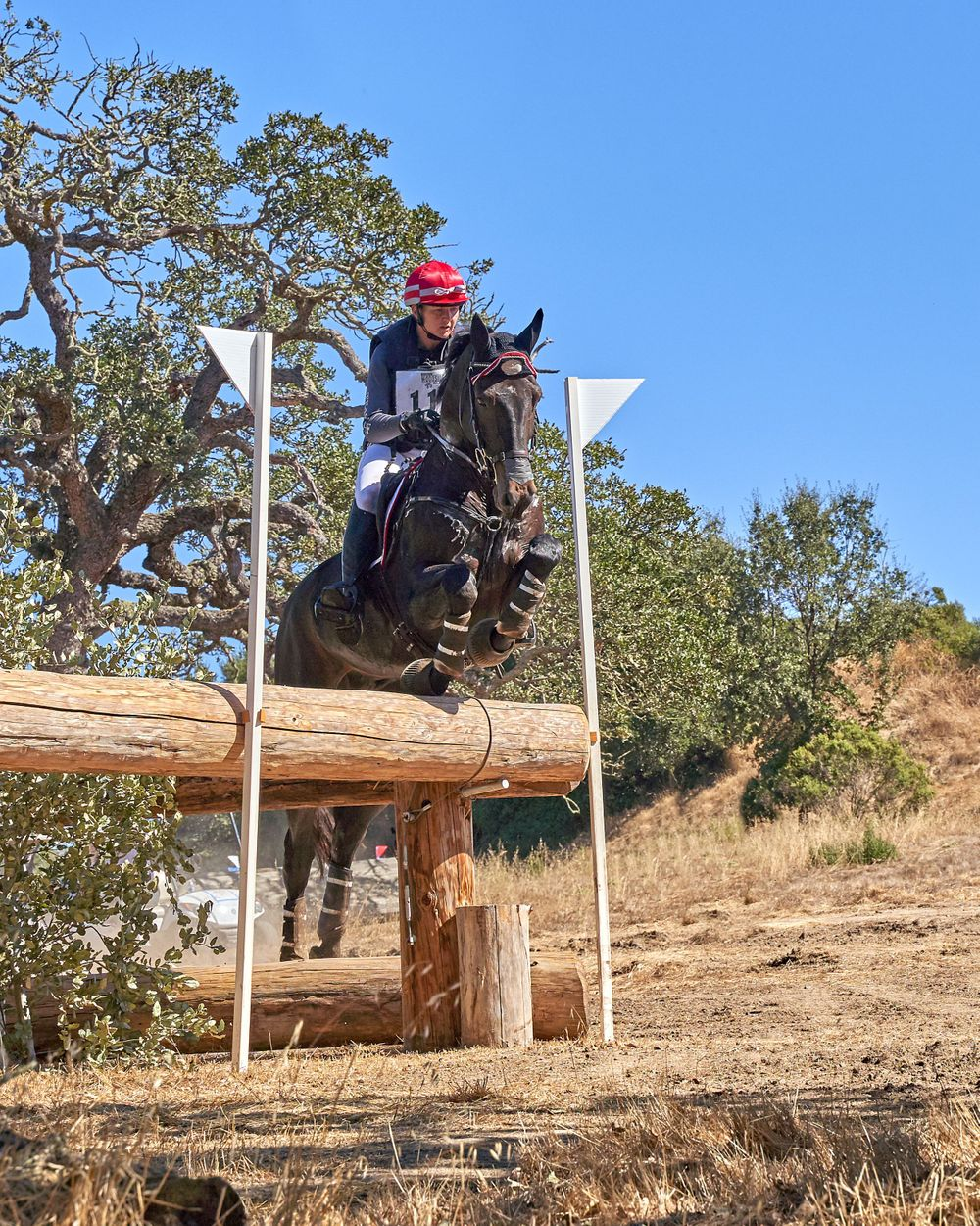 CCI 4* Cross Country Jump