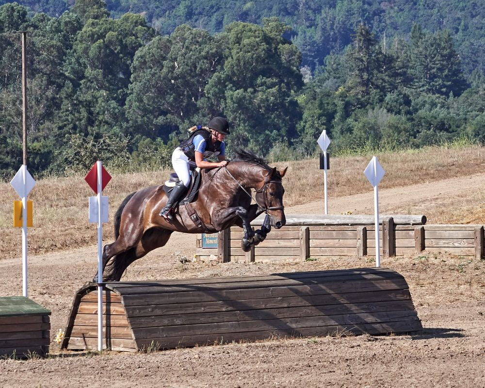 Pony Club Eventing in Woodside