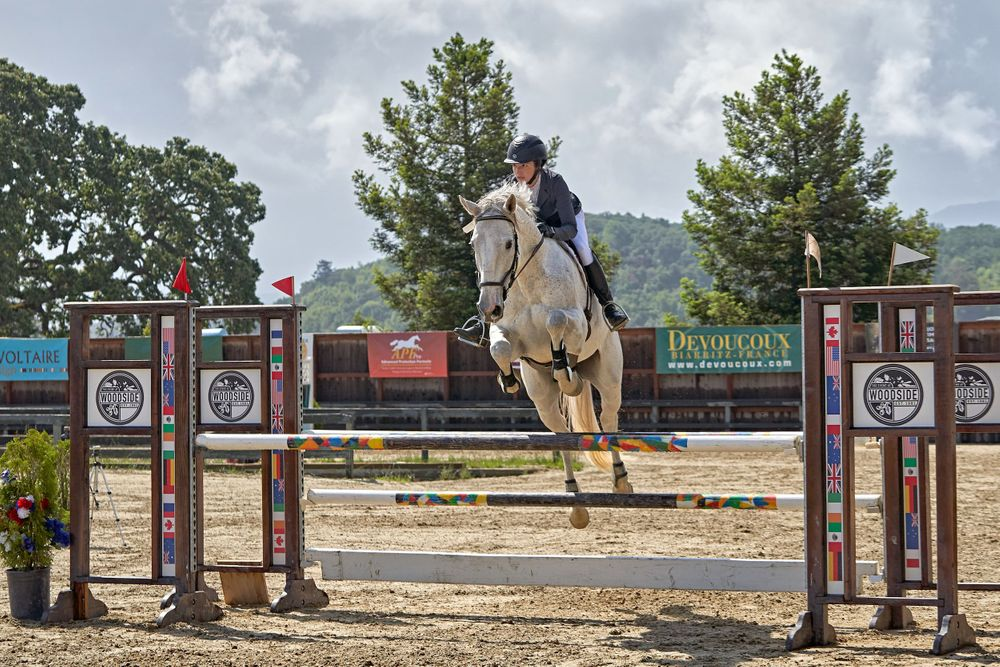 Show jumping at the Woodside Horse Park