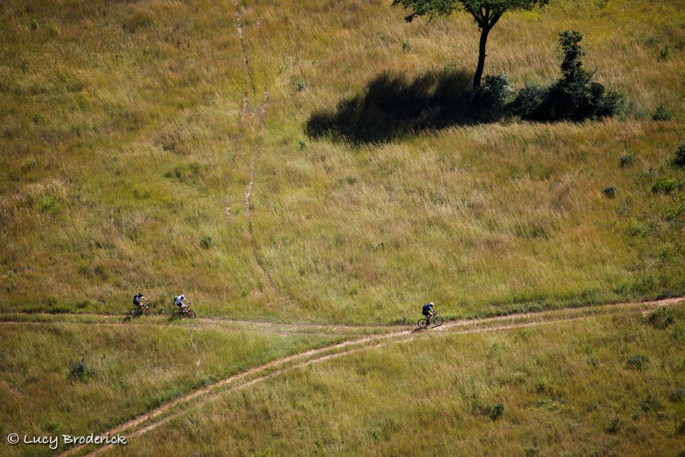 Aerial view of mountain bikers riding through grass taken from the top of Ruparara Rock, Nyanga, Zimbabwe, Ironwill.