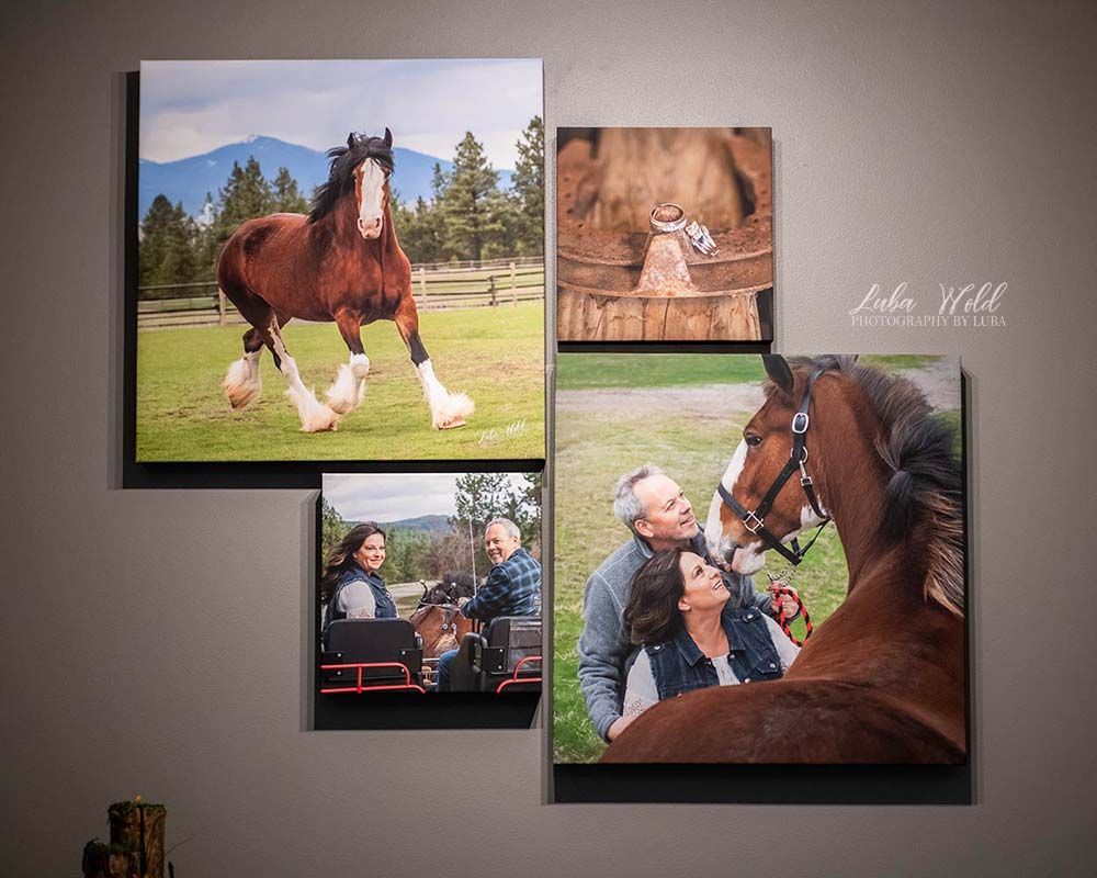 canvas wall collection with horses engagement ring engaged couple photographer luba wold spokane