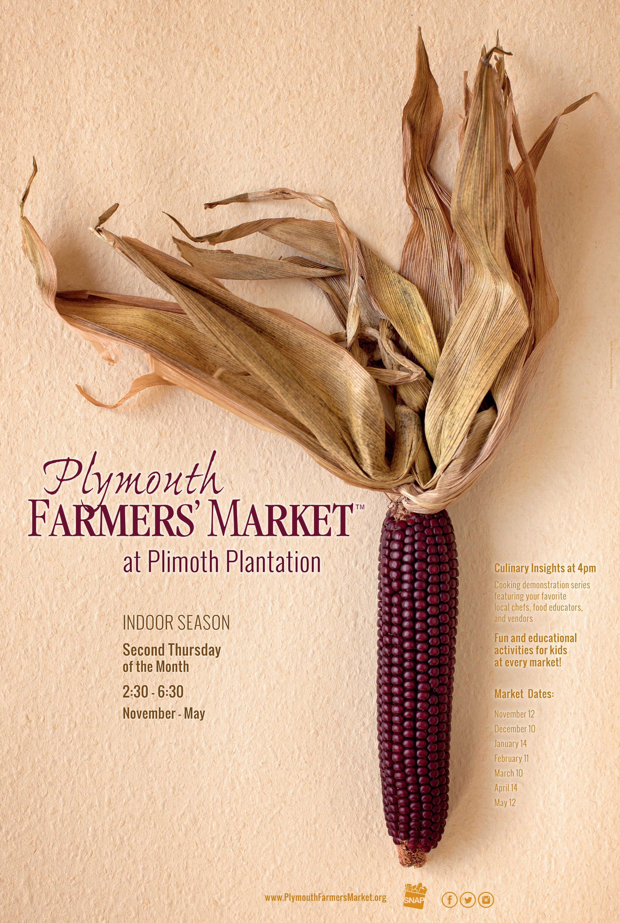 native corn for plymouth farmers market by plymouth ma photographer heidi harting