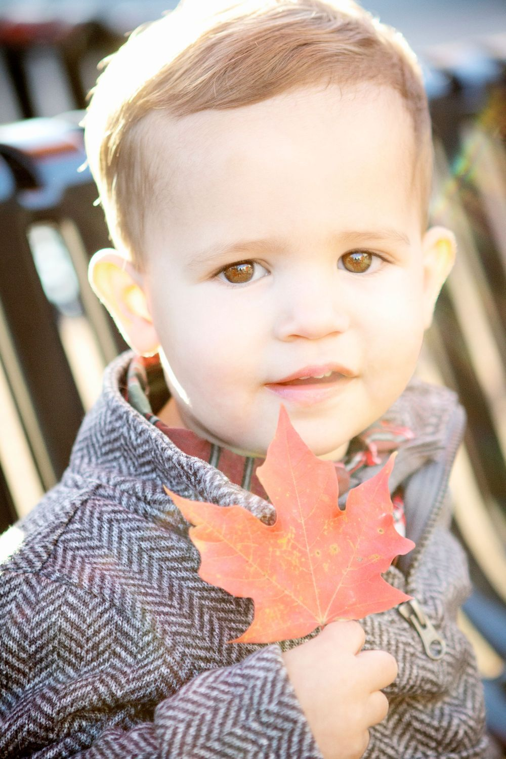"<img src=parker_28"" alt=""grove city children photography grove city family pictures"">"
