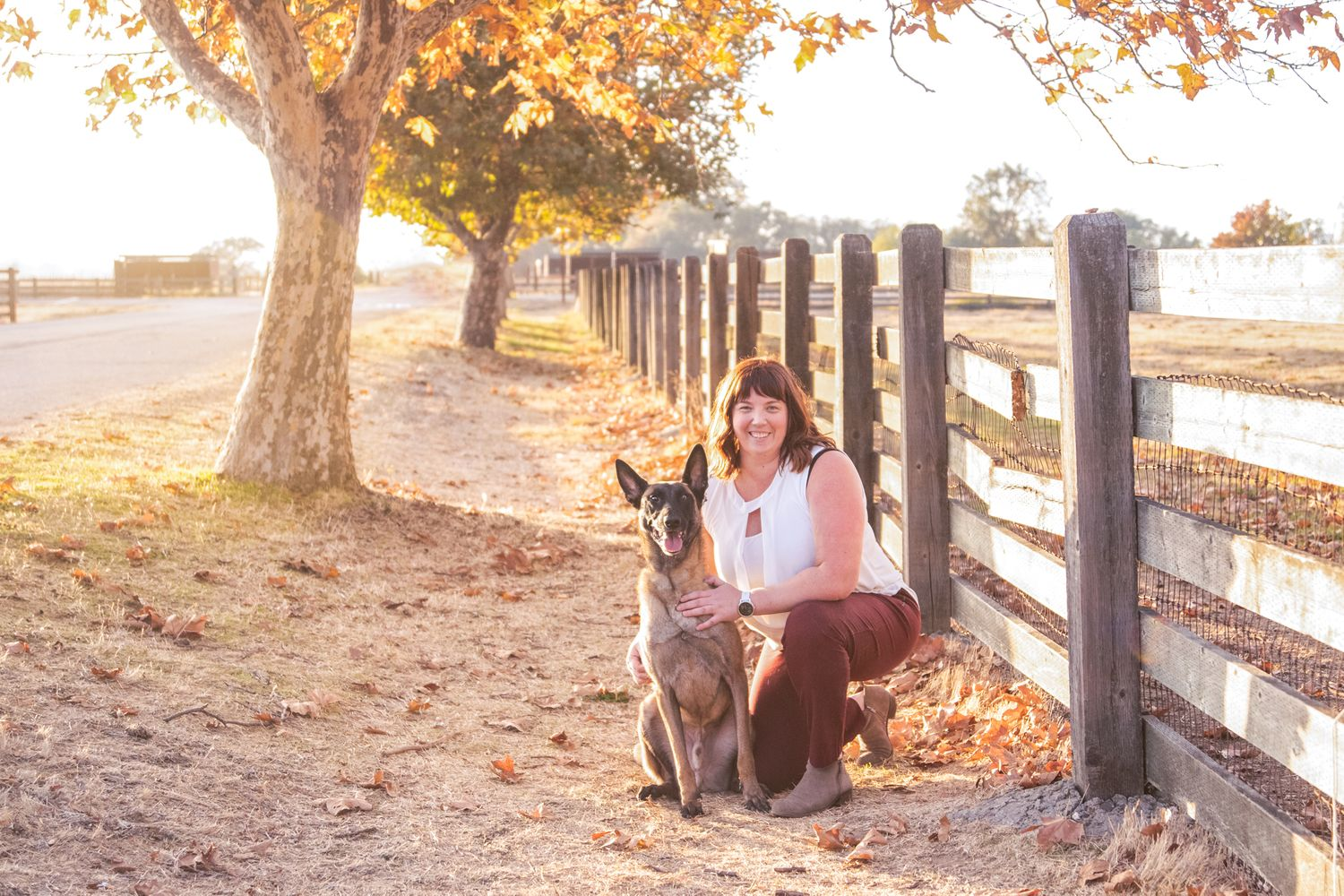 Photographer and her Belgian Malinois, kneeling in front of a fence in the golden sunlight