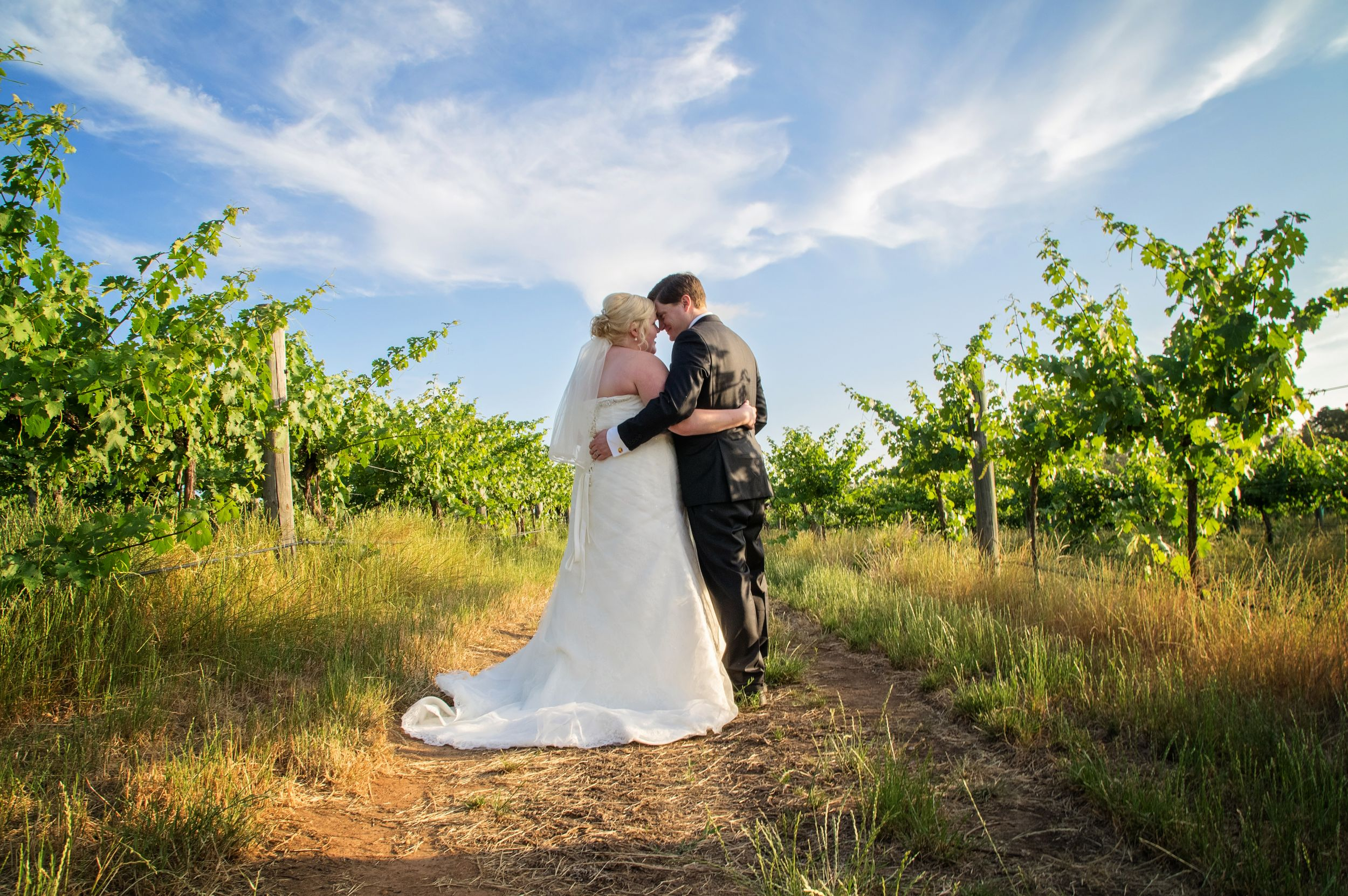bride and groom embracing in wineyards swan valley
