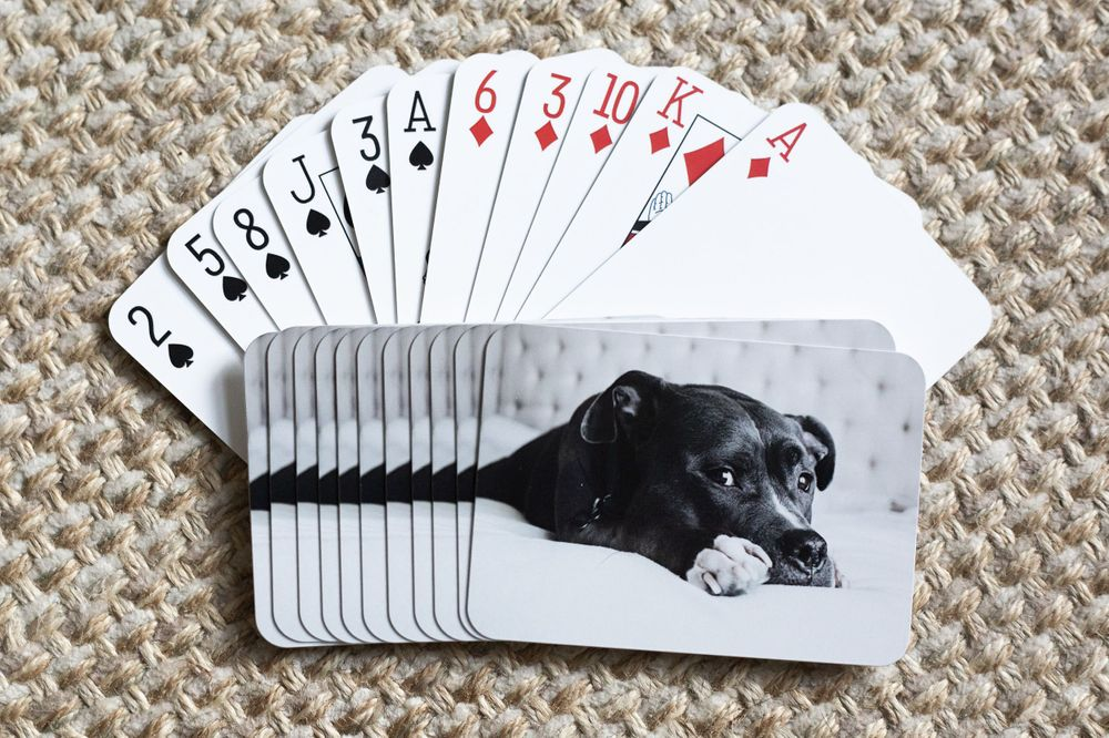 deck of cards, customizable